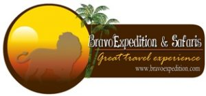 Bravo Expedition and Safaris Website Logo