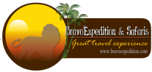 Bravo Expedition and Safaris Website Retina Logo