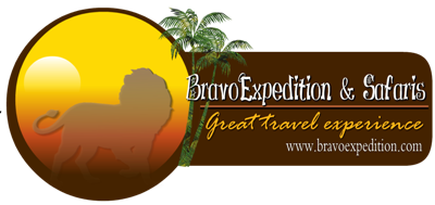 Bravo Expedition and Safaris Retina Logo