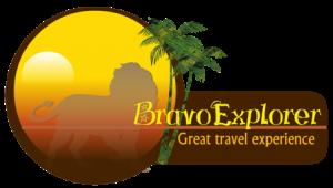 Bravo Explorer Web Logo