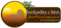 BravoExpedition Web Logo