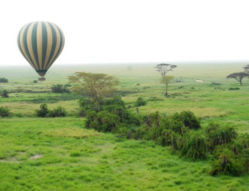 3 Day Serengeti Balloon Safari