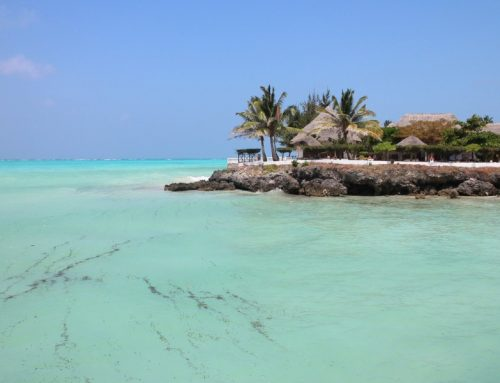 10 Day Safari and Zanzibar Beach Vacation