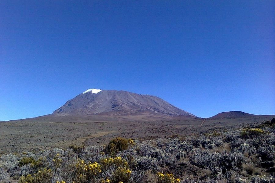 9 day kilimanjaro trekking Northern Circuit route