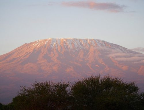 10 Day Kilimanjaro Trekking and Safari