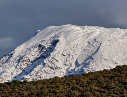 6 Day Kilimanjaro Climb Rongai Route