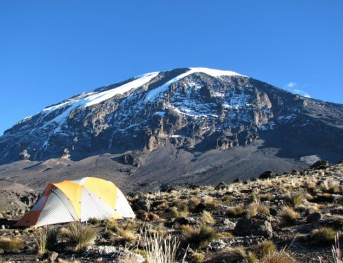 7 Day Kilimanjaro Climb Rongai Route